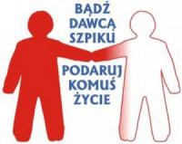 szpik1