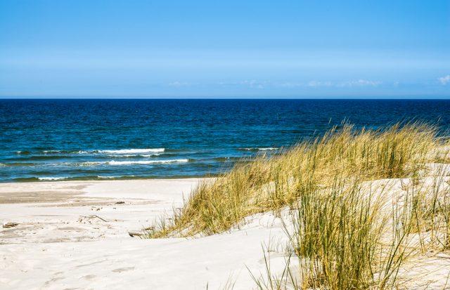 morze-bałtyckie-ekosystem-640x413